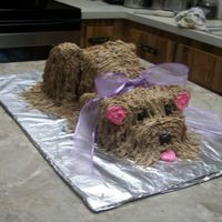 Doggy Cake ANOTHER VIEW OF MY DOGGY CAKE!!