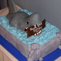 Shark Cake Shark is RKT. All other accents are MMF.