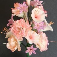 Carnation Spray This is a gumpaste flower bouquet made of carnations, trumpet flowers and hyacinth-like flowers.