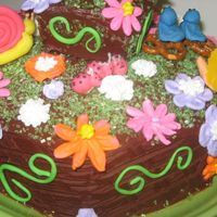Garden Cake For Mom - View Of The Back Of The Cake I made this cake for my mom's birthday. She loves to garden so I tried to capture the essence of that in this cake. Its a raspberry...