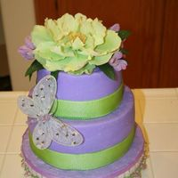Spring Birthday This cake was frosted with vanilla buttercream and the inside is one layer green and one layer purple to match the outside. Used fake...
