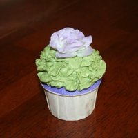 Lavender And Green Cupcake Close up view. The flower is non-edible.