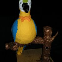 The Parrot I made this in a class with Bronwen Weber. With the stand and cake its abour 2ft. Base is wood and pipes covered in modeling choc. Parrot...