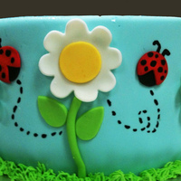 Lady Bug And Flower Cake