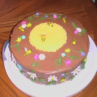 Bee Cake  I made this cake for a fellow beekeeper. It is chocolate with chocolate cream cheese icing. The honeycomb is made from candy melts. The...