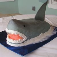Shark This cake was so heavy that the foam board couldn't support it, causing the butter cream to crack