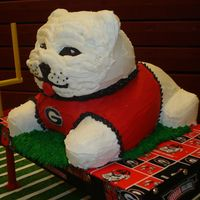 Bulldog UGA fan