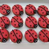 Ladybug Cupcakes chocolate cupcakes, with chocolate buttercream, topped with fondant. I used the ladybug cookie cutter to cut the fondant.