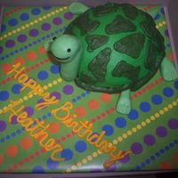 Turtle Turtle cake for a co-worker's birthday. My first time working with candy clay which was really fun and easy!
