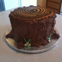 Tree Ring Cake zebra cake for the tree rings, chocolate wasc for the trunk.