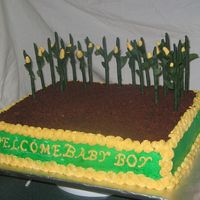 "John Deere This is a john Deere themed baby shower cake with gumpaste corn stalks. I used ""Oreo"" cookies and ""teddy Grahams"" for..."