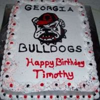 Georgia Bulldogs! I made this for my nephew.1/2 sheet with whipped buttercream icing.The bulldog is hand drawn on the cake then filled in.