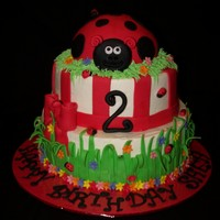 Ladybug Birthday thanks to whoever posted a similar picture. not sure if I saw it on CC or somewhere else, but just made a couple of changes and it turned...