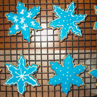 Snowflakes Cinnamon NFSC with Antonia 74 icing