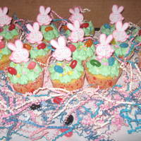 Easter Bunny Cupcakes Made these for my daughters class party. TFL!