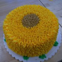 Sunflower Cake This was my final cake for a cake decorating class. I wanted to make something really bright and cheery and I was having difficulty making...