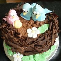 Birds Nest Cake This was made for a friends wedding anniversary- as it was 5 years we thought that we'd make wood from Chocolate and it developed into...