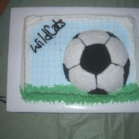 Soccer Goal We coach soccer and this is the end of season cake I did for our Party.