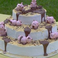 Kayls's 13Th Birthday Pig Cake Pigs playing in the mud, 13th birthday cake.