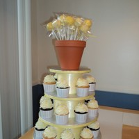 Daisy Cupcake Tower This tower consists of 24 cupcakes, all iced in buttercream and topped with a modeling chocolate daisy. The top is a pot filled with cake...