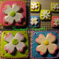 "Spring Cookies These cookies were inspired by TracyLH on ""CC"" and Montreal Confections on Flickr. They were made as a treat for Girls'..."