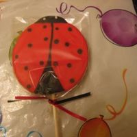Ladybug Party Favor Ladybug Party favor for my niece's b'day