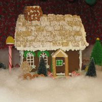 Img_0484_2.jpg I am new to this site but have been decorating cakes etc for years...Just thought I would post a pic of the gingerbread house I made and...
