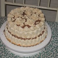 Picnic Cake Chocolate Cake with peanut butter flavored butterceam icing. Made for huubys company picnic