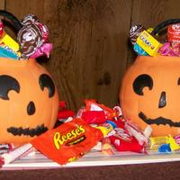 Trick Or Treat   Pumpkin Trick or Treat....