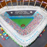 Inside Yankee Stadium Here is the inside shot of this cake. I made the crowd with Wilton Non Pariel Sprinkles over blue frosting (because the seats in Yankee...