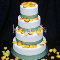 Practice Cake #2 Another practice cake for pictures