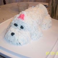 My Maltese Cake This is for my best friend Leah, to look like her little Fritz :)