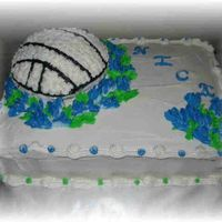 Volleyball/bluebonnets chocolate with raspberry filling for sheet, french vanilla with strawberry for volleyball. Done in all bc. Done for a dear friend who was...