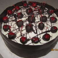 Chocolate Covered Maraschino Cherry Cake