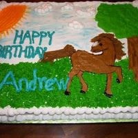 Pony Cake A birthday cake for a 5 year old boy birthday party.