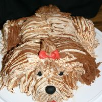 "My First 3D (Kinda) Cake This is my attempt at the puppy dog cake. I used two 4"" cakes and one 5"" cake. Chocolate sour cream cake with chocolate and..."