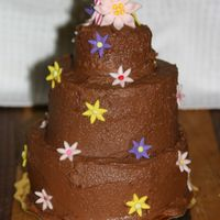 "Rachel's Birthday Cake This is the cake I made for my daughters second birthday. WASC 5"",4""3"" with chocolate frosting. First time stacking a cake...."