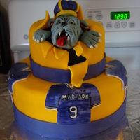 Jmu Duke Dog Cake's covered in BC and fondant. Head made of RKT and fondant.