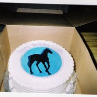 Black Horse handpainted black horse, done for a teenagers birthday