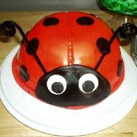 Lady Bug Cake This is my first and only animal cake so far. My niece loves ladybugs so I made this for her. I used a mixing bowl to bake the cake in. I...