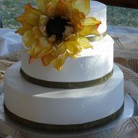 Sunflower And Velvet   Dummy cake used for my first bridal show. I managed to catch the only good lighting on my porch for this shot.