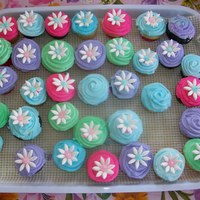 Mini Cupcakes With Mmf Daisies bright colored mini cupcakes I made for easter. mmf daisies on them. Thanks for looking