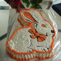 An Easter Bunny THIS IS A PRACTICE CAKE I MADE FOR MY KIDS