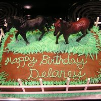 Horse Birthday Cake This cake was for our friend's daughter. They brought the horses, and she wanted it to look like a field. I made the fence out of...