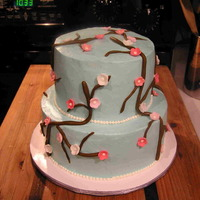 Cherry Blossom Cake I made this cake for my entry in to our County Fair. It's a white cake with whipped icing (nothing fancy, but yummy). This is my first...