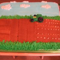 "John Deere Cake All buttercream, except for fondant tractor made from a candy mold and ice cream topping ""seeds"". Thanks for looking!"