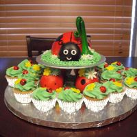 Lady Bug 1St B-Day Lady bug smash cake with lady bug cupcakes.