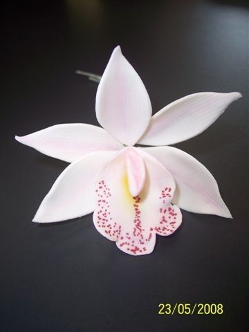 Cymbidium Orchid Cymbidium orchid made from flower paste....Only my 2nd orchid I have made