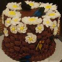 Chocolate Basketweave 4-layer chocolate raspberry cake, covered with a chocolate basketweave, RI daisies, RI drop flowers, and edible butterflies using CC...