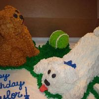 Taylor's Dogs I carved this out of a sheet cake for my niece's 10th birthday.